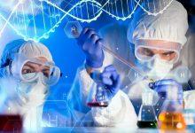تصویر از بی ضرر و سالم؛ تولید رنگ مصنوعی سازگار با محیط زیست از قارچ