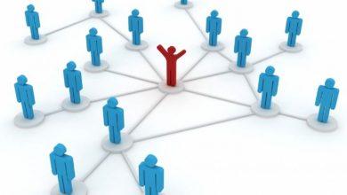 تصویر از مدیر یا ایده؛ کدام عامل در موفقیت اهمیت بیشتری دارد؟