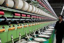 تصویر از صادرات سالانه ۲۴۰ هزار تن الیاف در کشور